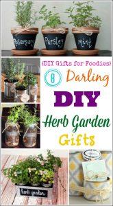 THK DIY Herb Garden Collage