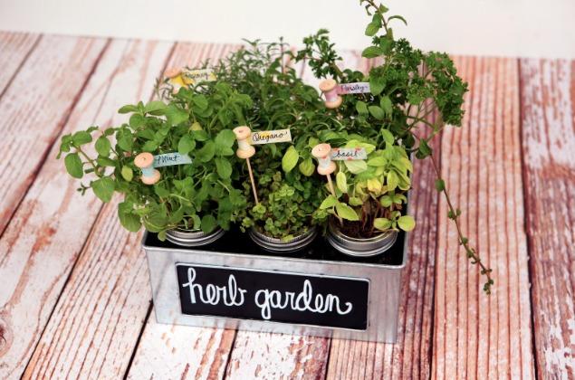 THK DIY Herb Garden2