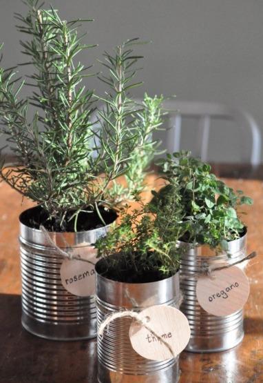 THK DIY Herb Garden6