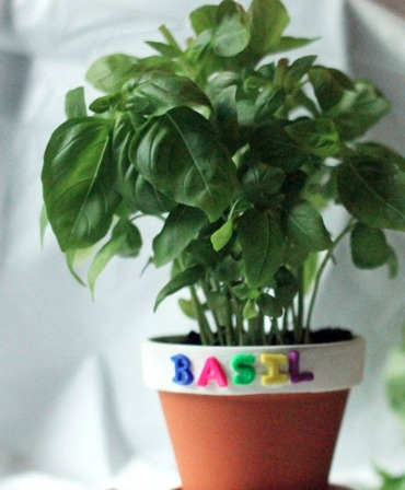 THK DIY Herb Garden8