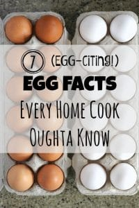 THK Egg Facts Text1