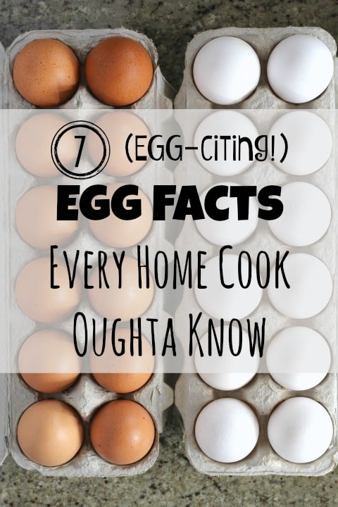 7 EGG-citing Egg Facts Every Home Cook Oughta Know {www.TwoHealthyKitchens.com}
